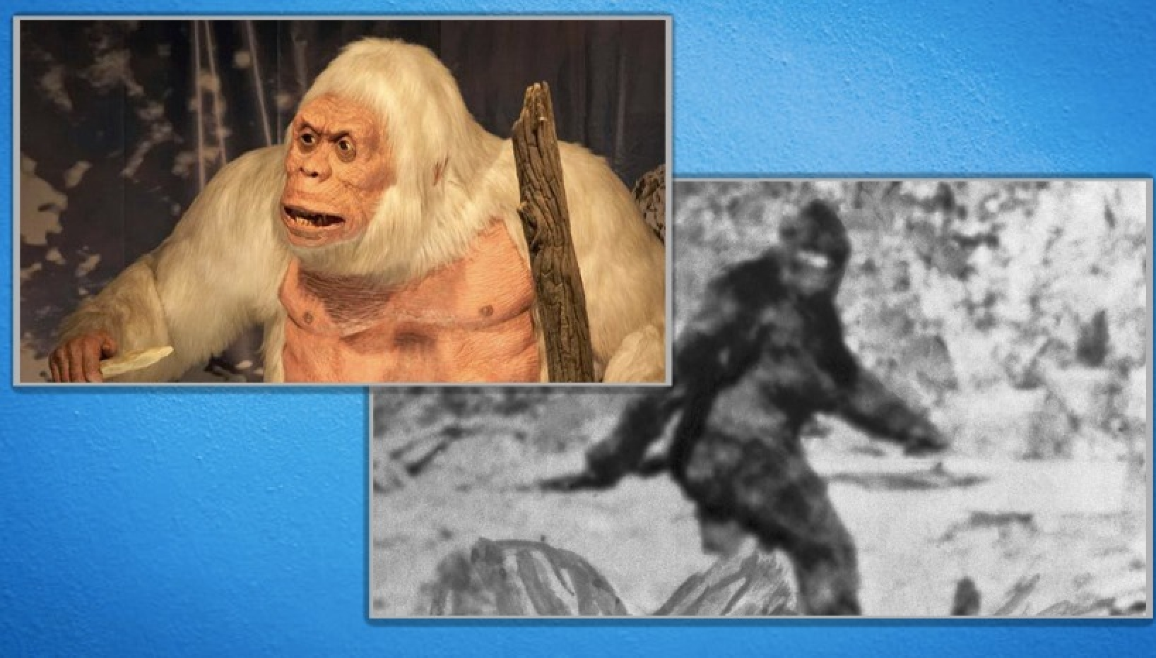 A US Legislator Suggests Bigfoot Hunting Season! Here Are Some Parallels With Our Own Cryptid Yeti