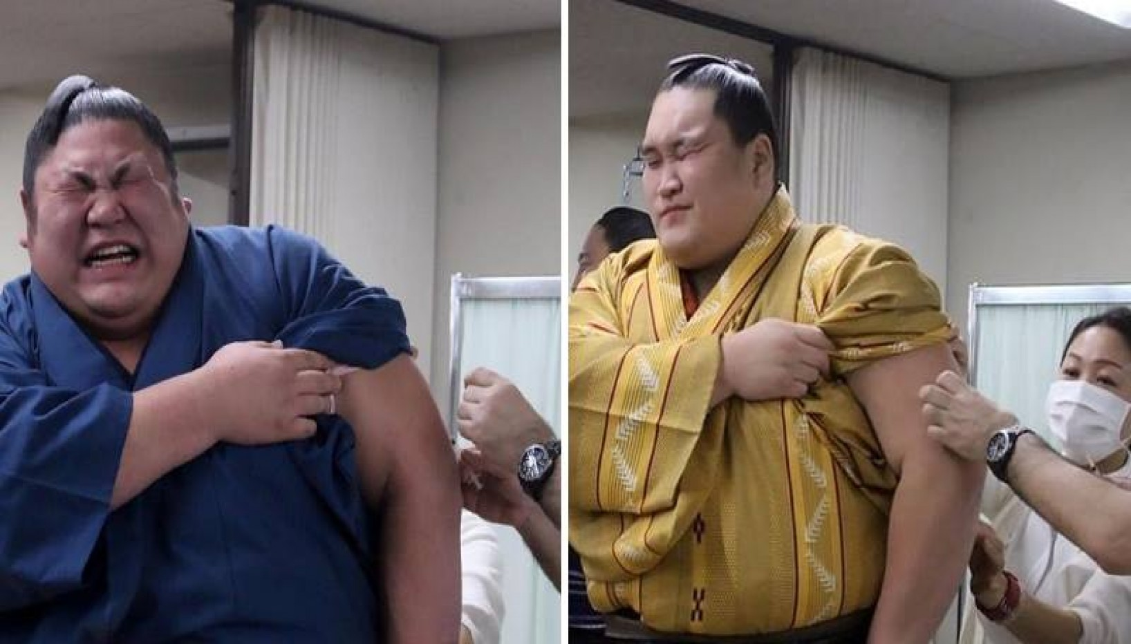 Formidable Fighters Or Fluffy Teddy Bears? Sumo Wrestlers Wince In Agony As They Get Flu Jabs!